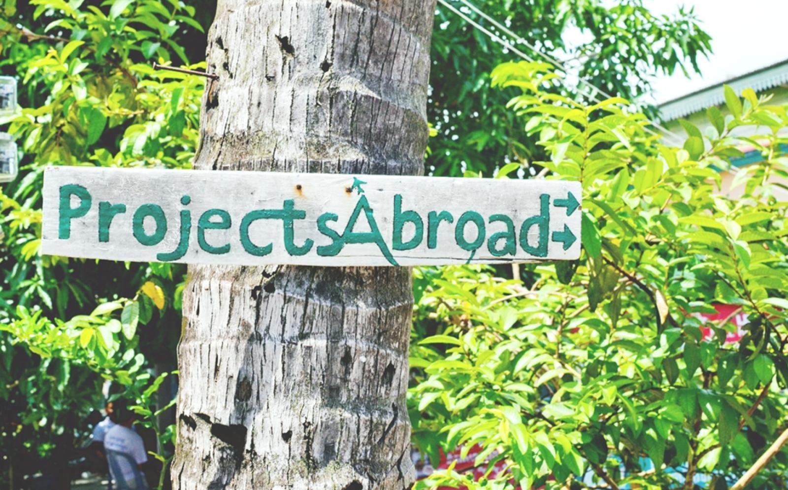 木に付けられたプロジェクトアブロードのサイン
